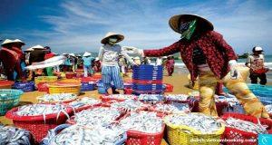 Cơm niêu Quán Việt nhập hàng từ làng chài mũi né
